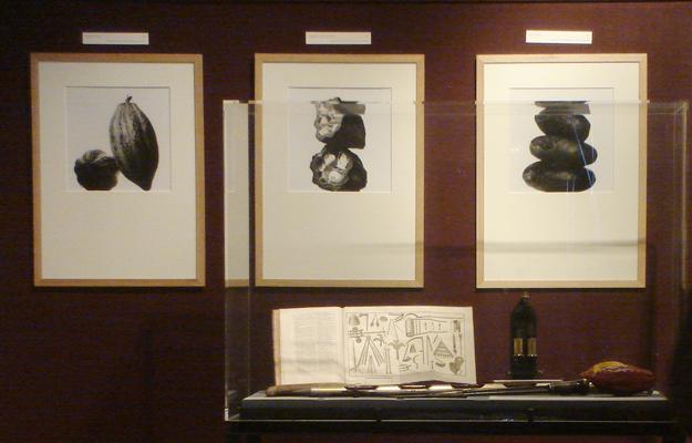 photographies Jean-Louis Bloch Laine, exposition Vilmorin La Baule